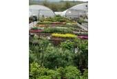 Zahradnictví Vedrovice (Okres Znojmo)